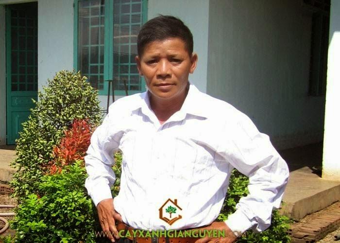 Nguyễn Công Quang - Giám đốc điều hành Công ty Cây Xanh Gia Nguyễn