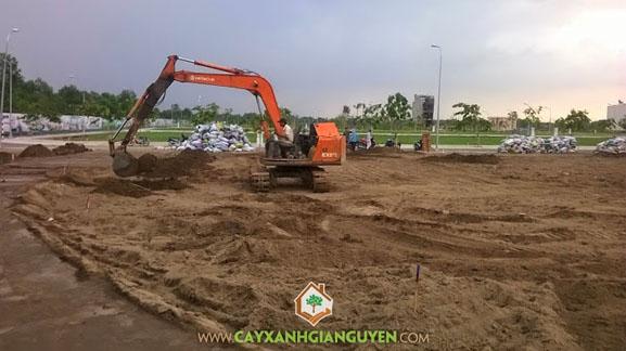cây xanh Gia Nguyễn, công ty cây xanh Gia Nguyễn, san lắp mặt bằng, trồng cây, cây xanh, khu dân cư, khu công trình